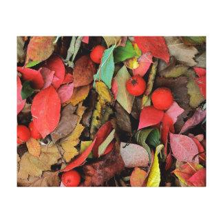USA, Washington, Spokane Co., Hawthorn Leaves Stretched Canvas Prints