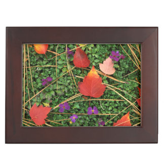 USA, Washington, Spokane County, Hawthorn Leaves 3 Keepsake Box