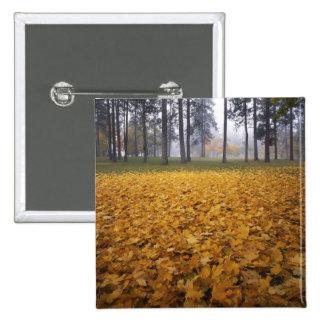 USA, Washington, Spokane, Manito Park, Autumn 15 Cm Square Badge