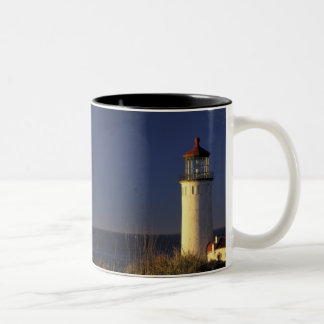 USA, Washington State, Fort Canby State Park. Two-Tone Mug