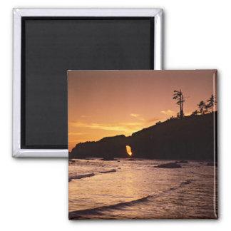 USA, Washington State, Olympic National Park. 2 Magnet