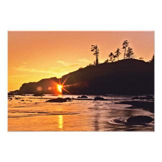 USA, Washington State, Olympic National Park. 2 Photo Art