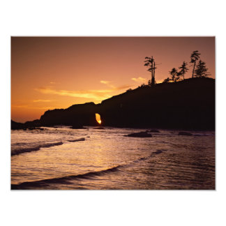 USA, Washington State, Olympic National Park. 2 Photo Print