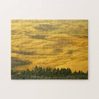 USA, Washington, Whitman County, Palouse, Wheat Jigsaw Puzzle