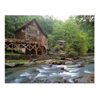 USA, West Virginia, Babcock SP. Rustic Glade Postcard