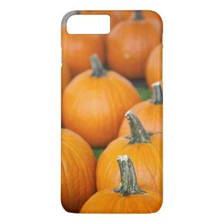 USA, West Virginia, Charleston. Capitol 2 iPhone 7 Plus Case