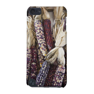 USA, West Virginia, Charleston. Capitol iPod Touch 5G Cases