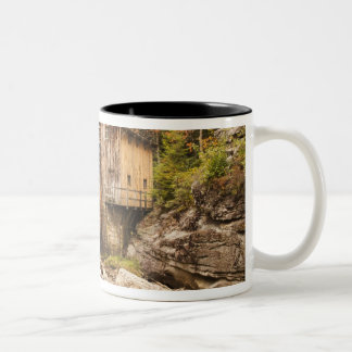 USA, West Virginia, Clifftop. Babcock State 2 Two-Tone Mug