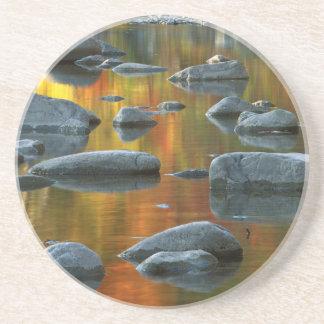 USA, West Virginia, Spruce Knob-Seneca Rocks 3 Drink Coaster
