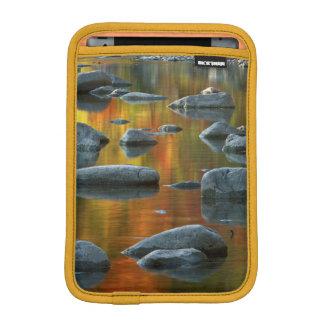 USA, West Virginia, Spruce Knob-Seneca Rocks 3 iPad Mini Sleeves