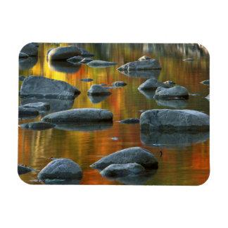 USA, West Virginia, Spruce Knob-Seneca Rocks 3 Rectangular Photo Magnet