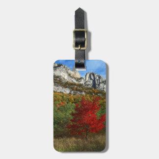 USA, West Virginia, Spruce Knob-Seneca Rocks Bag Tags
