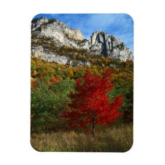 USA, West Virginia, Spruce Knob-Seneca Rocks Rectangular Photo Magnet