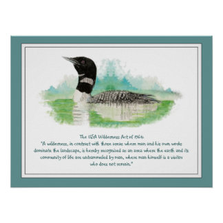 USA Wilderness Act Quote, Watercolor Loon Poster