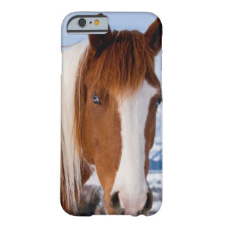 USA, Wyoming, Grand Teton National Park 3 Barely There iPhone 6 Case