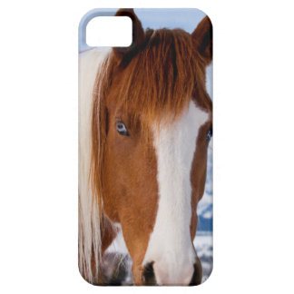 USA, Wyoming, Grand Teton National Park 3 Case For The iPhone 5