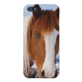 USA, Wyoming, Grand Teton National Park 3 iPhone 5/5S Case