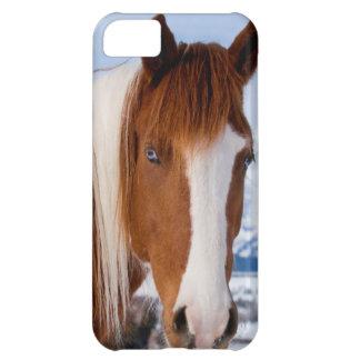 USA, Wyoming, Grand Teton National Park 3 iPhone 5C Case