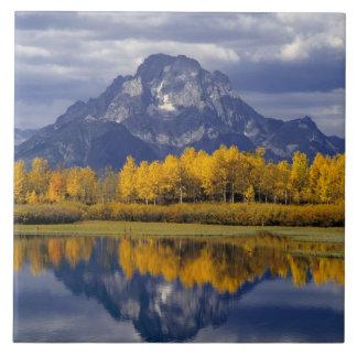 USA, Wyoming, Grand Teton NP. Against the Large Square Tile
