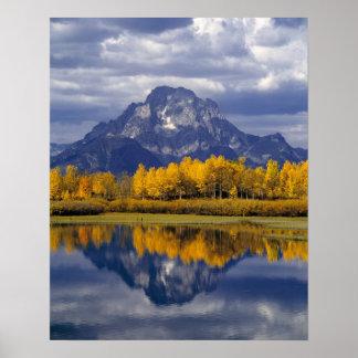 USA, Wyoming, Grand Teton NP. Against the Poster