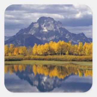 USA, Wyoming, Grand Teton NP. Against the Square Sticker