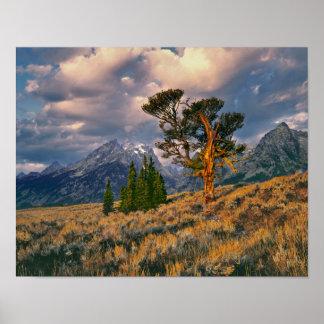 USA, Wyoming, Grand Teton NP. Sunrise greets a Poster