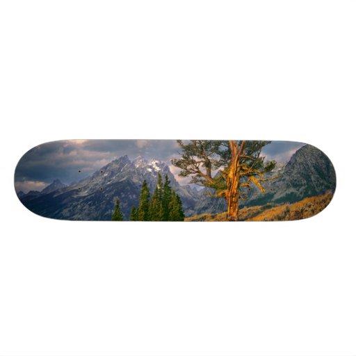 USA, Wyoming, Grand Teton NP. Sunrise greets a Custom Skate Board
