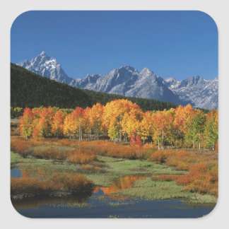 USA, Wyoming, Grand Tetons National Park in Square Sticker