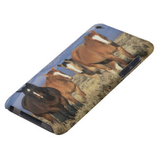 USA, Wyoming, near Cody Group of horses, Heart iPod Touch Case