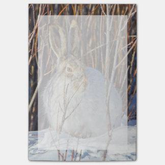 USA, Wyoming, White-tailed Jackrabbit sitting on Post-it® Notes