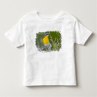 USA, Wyoming, Yellow-breasted Chat Icteria 2 Shirt