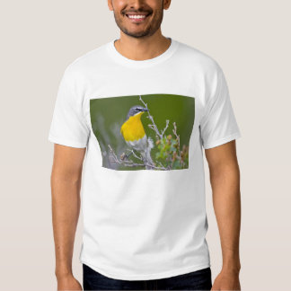 USA, Wyoming, Yellow-breasted Chat Icteria 2 T Shirt