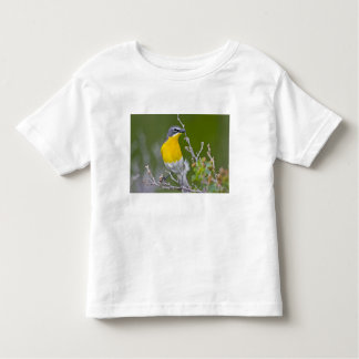 USA, Wyoming, Yellow-breasted Chat Icteria 2 Tshirts