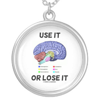 Use It Or Lose It (Anatomical Brain Humor) Silver Plated Necklace