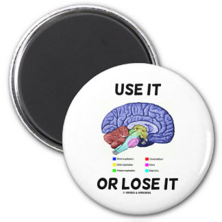 Use It Or Lose It (Brain Anatomy Humor Saying) 6 Cm Round Magnet