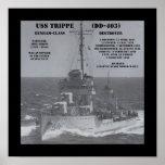 USS Trippe (DD-403) Posters