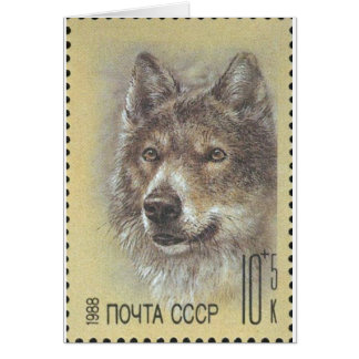 USSR ~ Stamp Russian Wolf Greeting Card