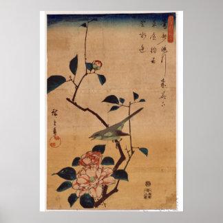 Utagawa Hiroshige, Camellia and Bush Warbler, 1844 Poster
