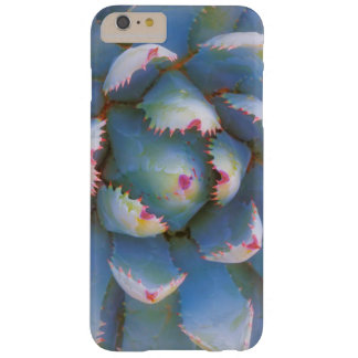 Utah, Dixie National Forest. Close-up of yucca Barely There iPhone 6 Plus Case
