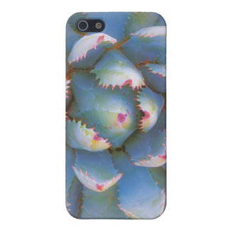 Utah, Dixie National Forest. Close-up of yucca iPhone 5/5S Cases