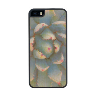 Utah, Dixie National Forest. Close-up of yucca Wood iPhone SE/5/5s Case