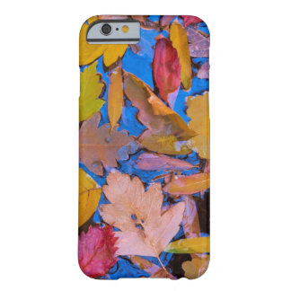 Utah, Glen Canyon National Recreation Area 2 Barely There iPhone 6 Case