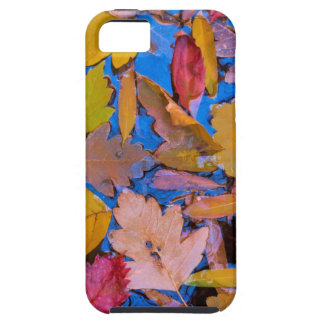 Utah, Glen Canyon National Recreation Area 2 Case For The iPhone 5