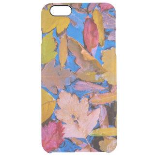 Utah, Glen Canyon National Recreation Area 2 Clear iPhone 6 Plus Case