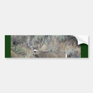 Utah mule deer buck bumper sticker