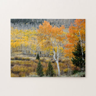 Utah, USA. Aspen Trees And Willow Thickets Jigsaw Puzzle