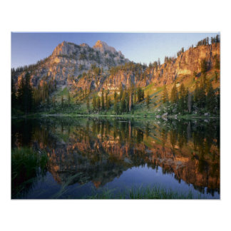 UTAH. USA. Mt. Magog reflected in White Pine Poster