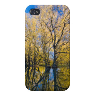 Utah. USA. Peachleaf Willow Trees Case For iPhone 4