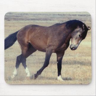 Utah Wild Mustang Mouse Pad