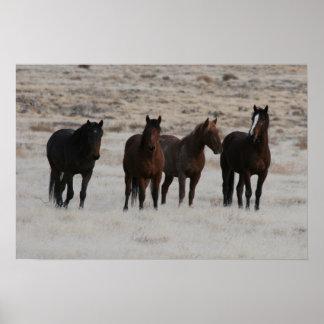 Utah Wild Mustangs Print